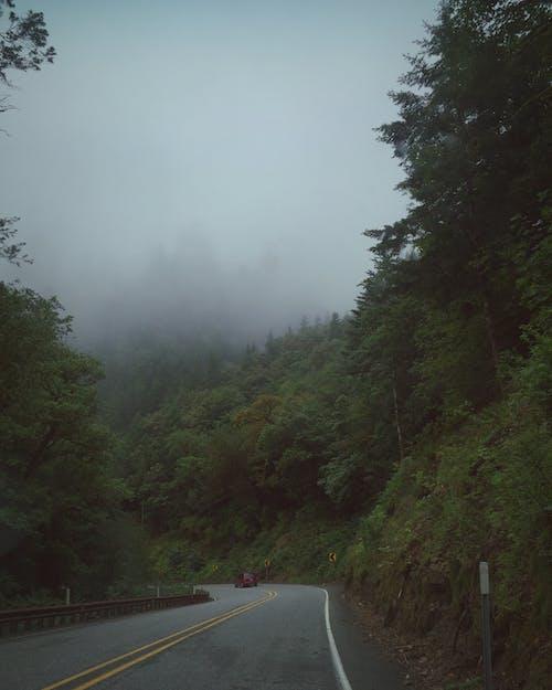 Darmowe zdjęcie z galerii z autostrada, autostrada 101, droga szybkiego ruchu