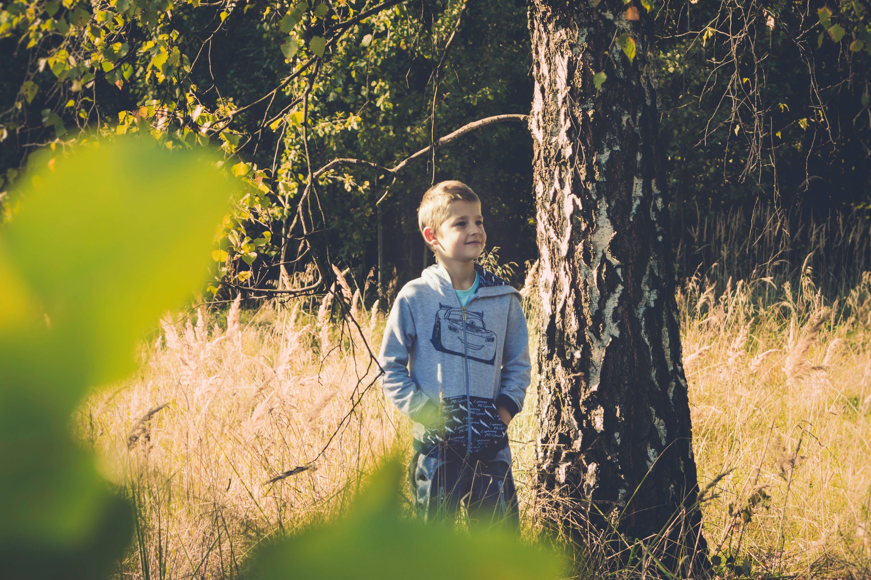 Boy Standing Beside Brown Tall Tree