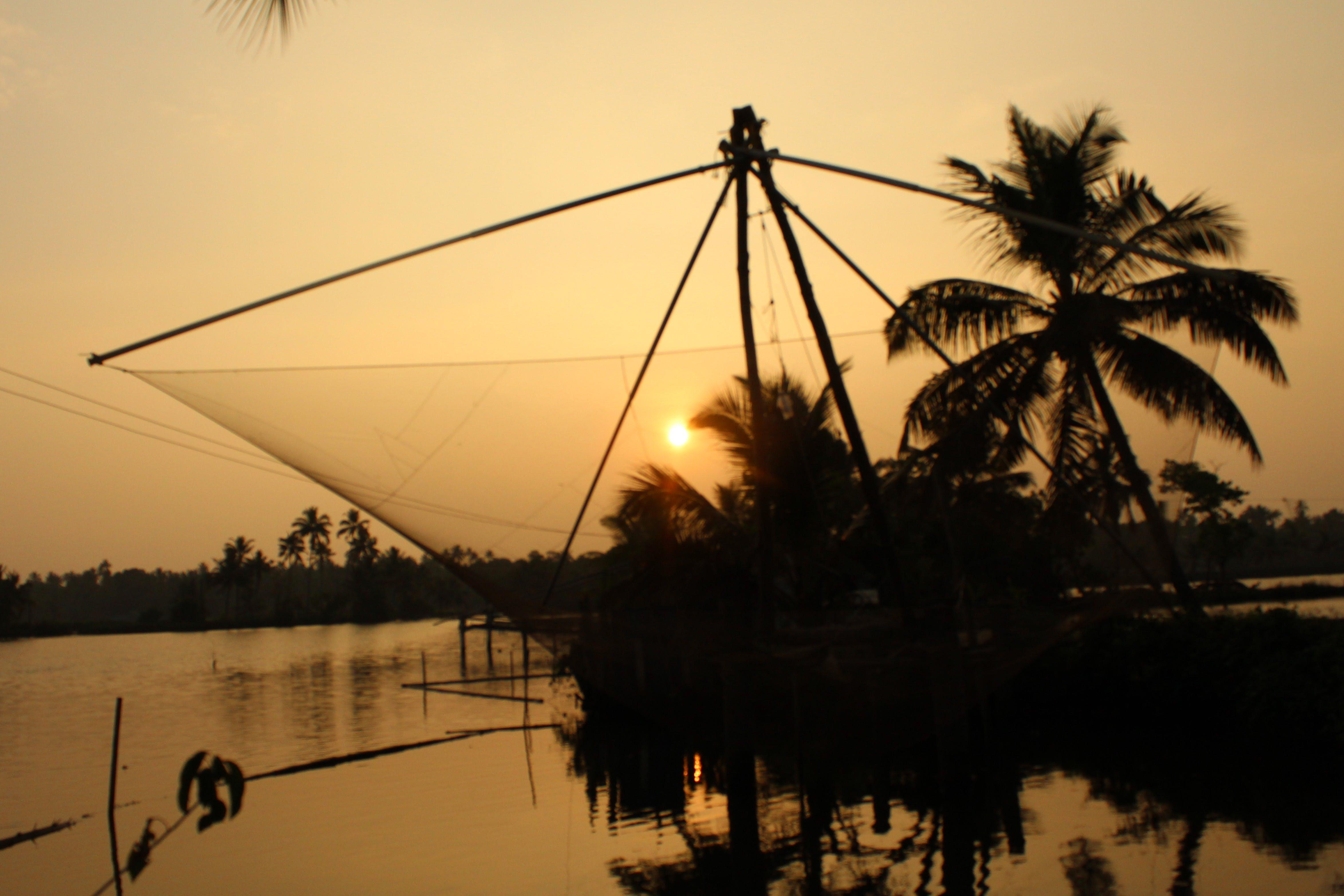 Kostenloses Stock Foto zu fischnetz, landschaft, natur-hintergrund, palmen