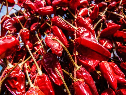 Free stock photo of chili pepper, italy