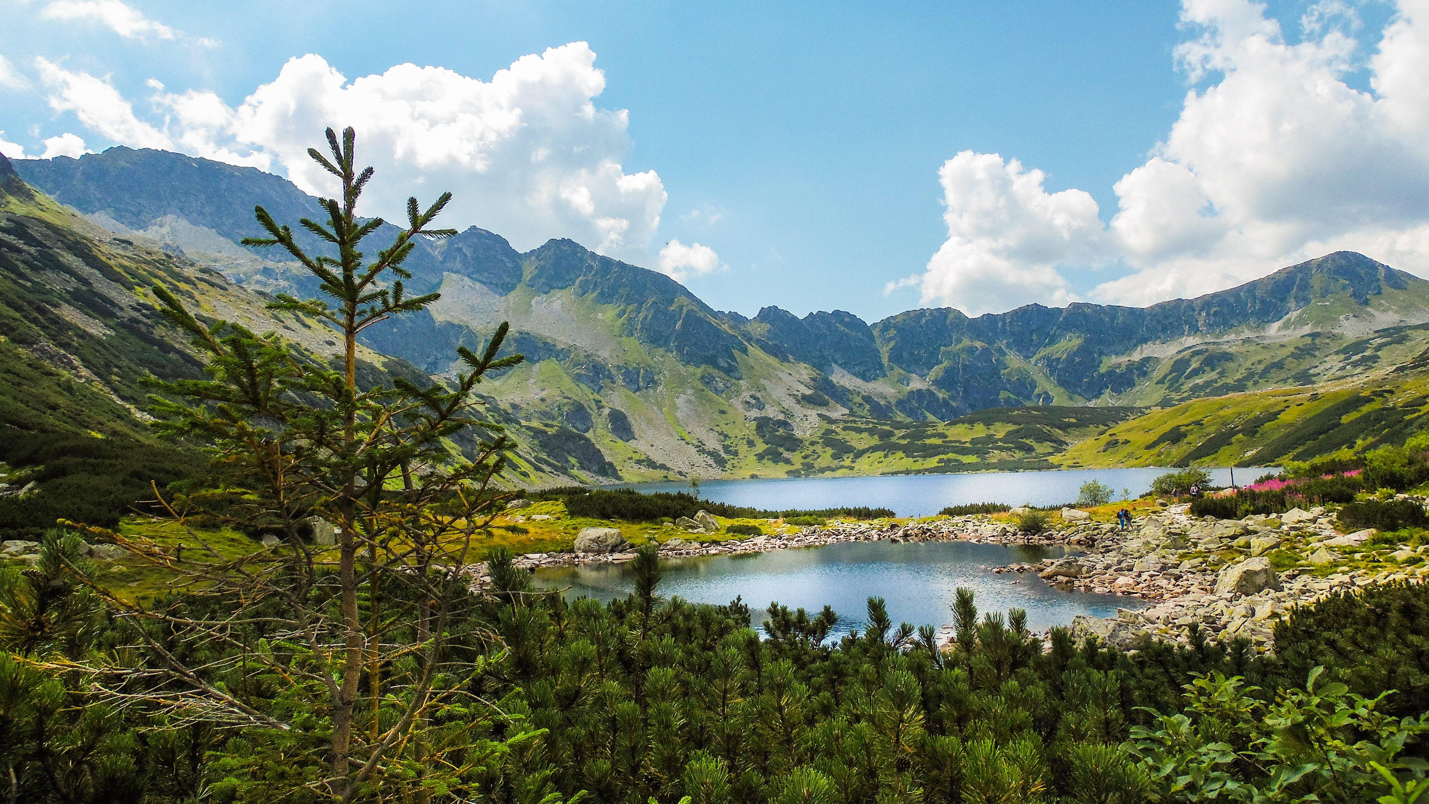 のどか, 山岳, 環境, 絶景の無料の写真素材