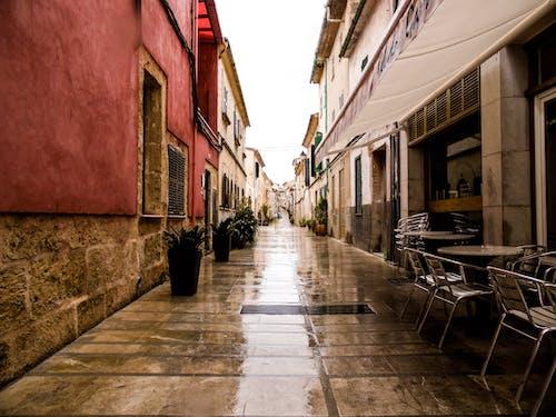 Free stock photo of city, old city, wet