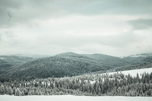 Základová fotografie zdarma na téma černobílá, denní, denní světlo, hory