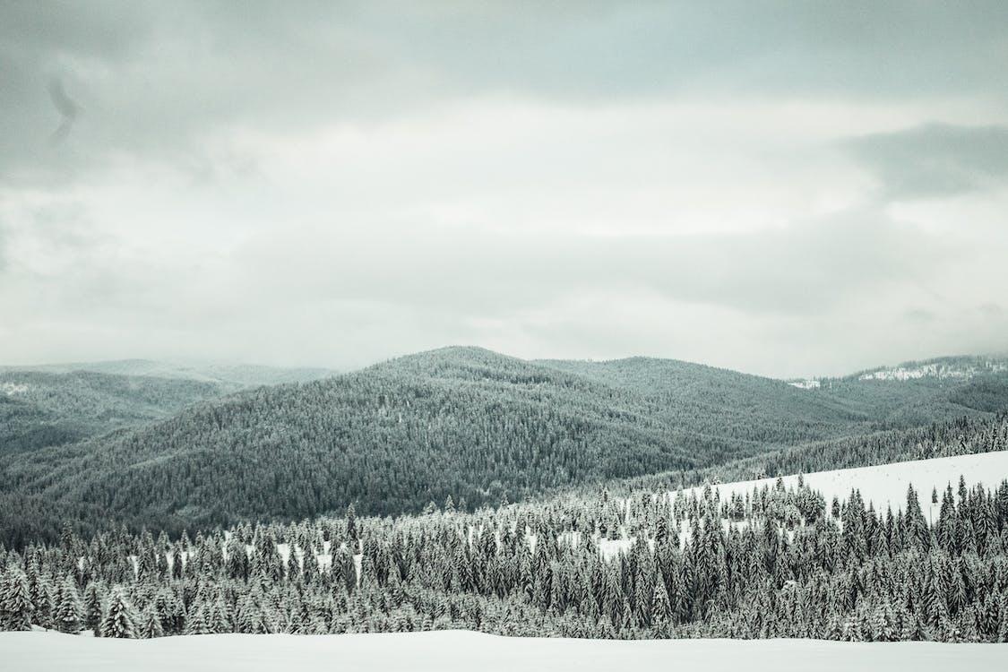 высокий, горный пик, горы