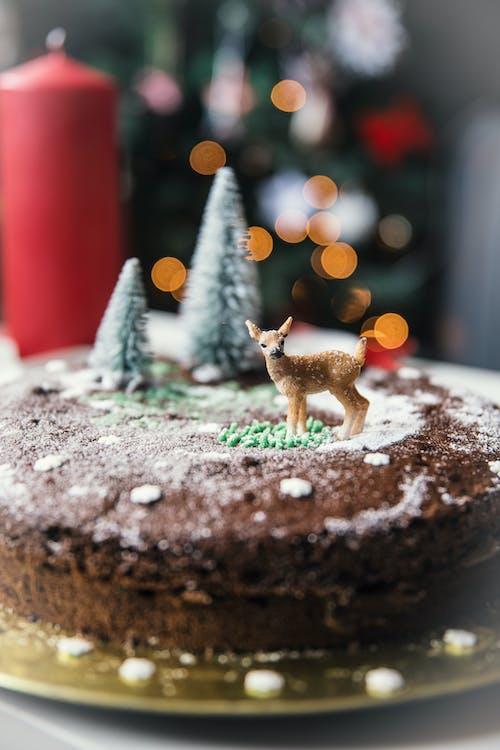 Free stock photo of cake, candle, christmas, christmas cake