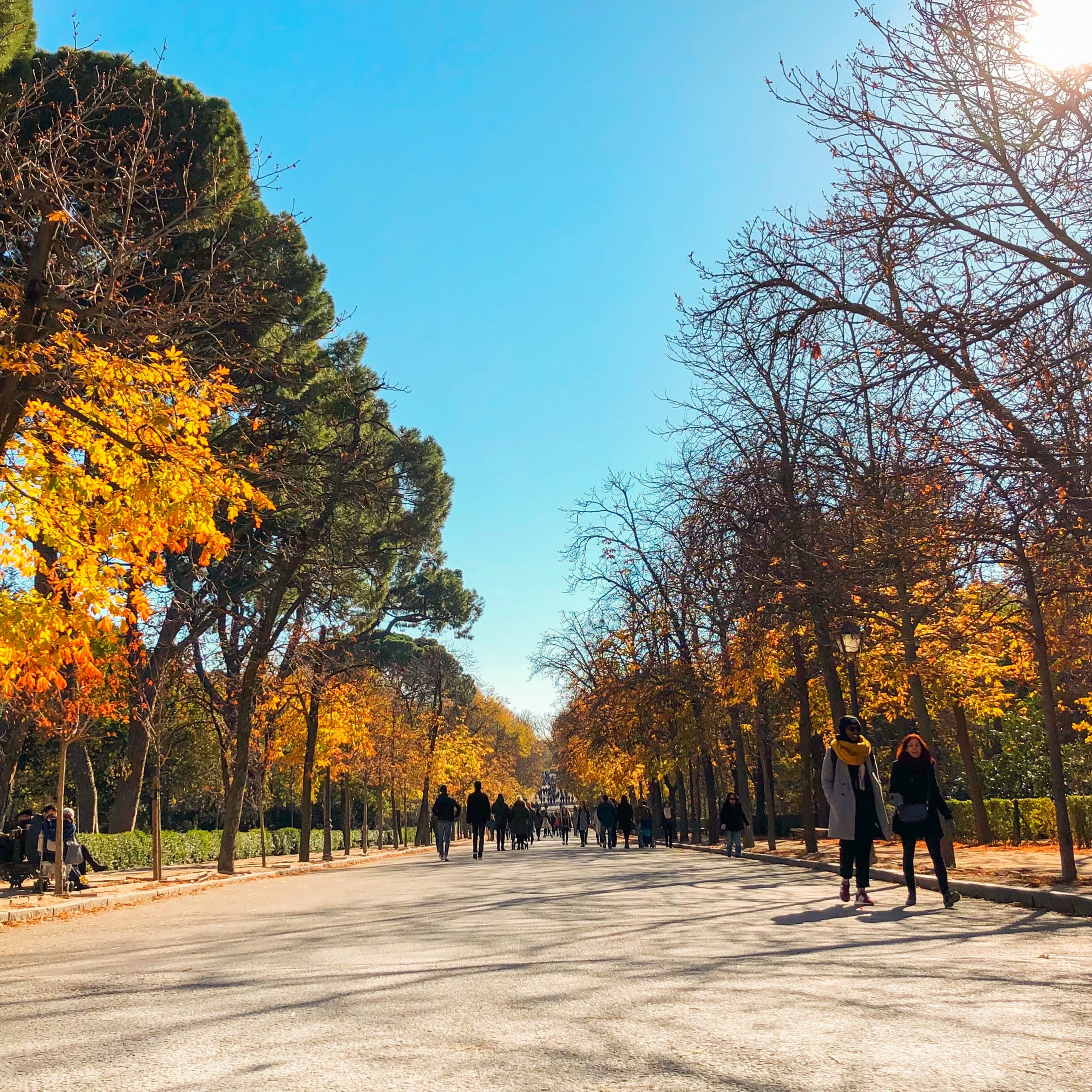 Free stock photo of madrid, outdoor, park, spain