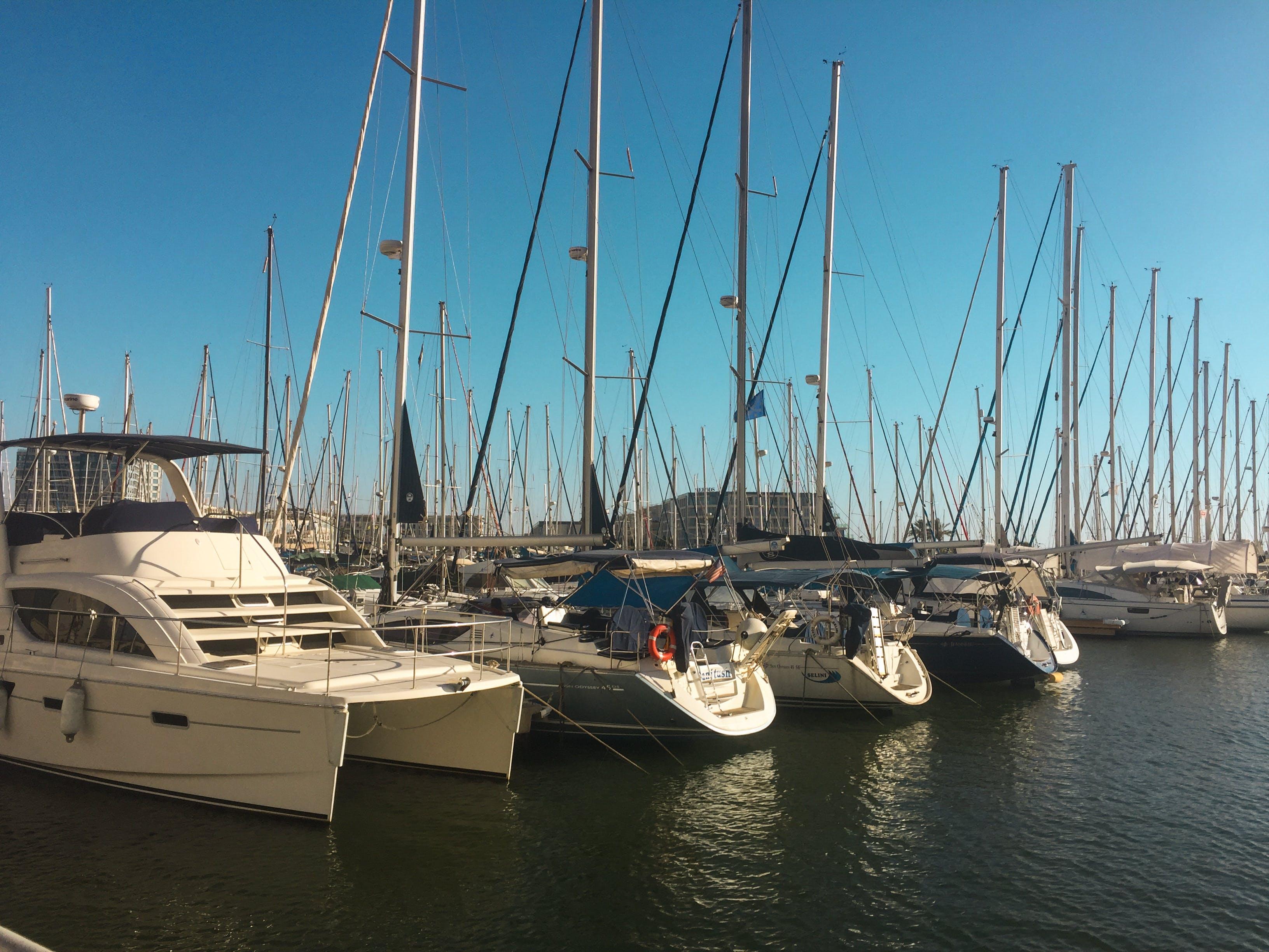 Free stock photo of boat, expensive, iarael, marina