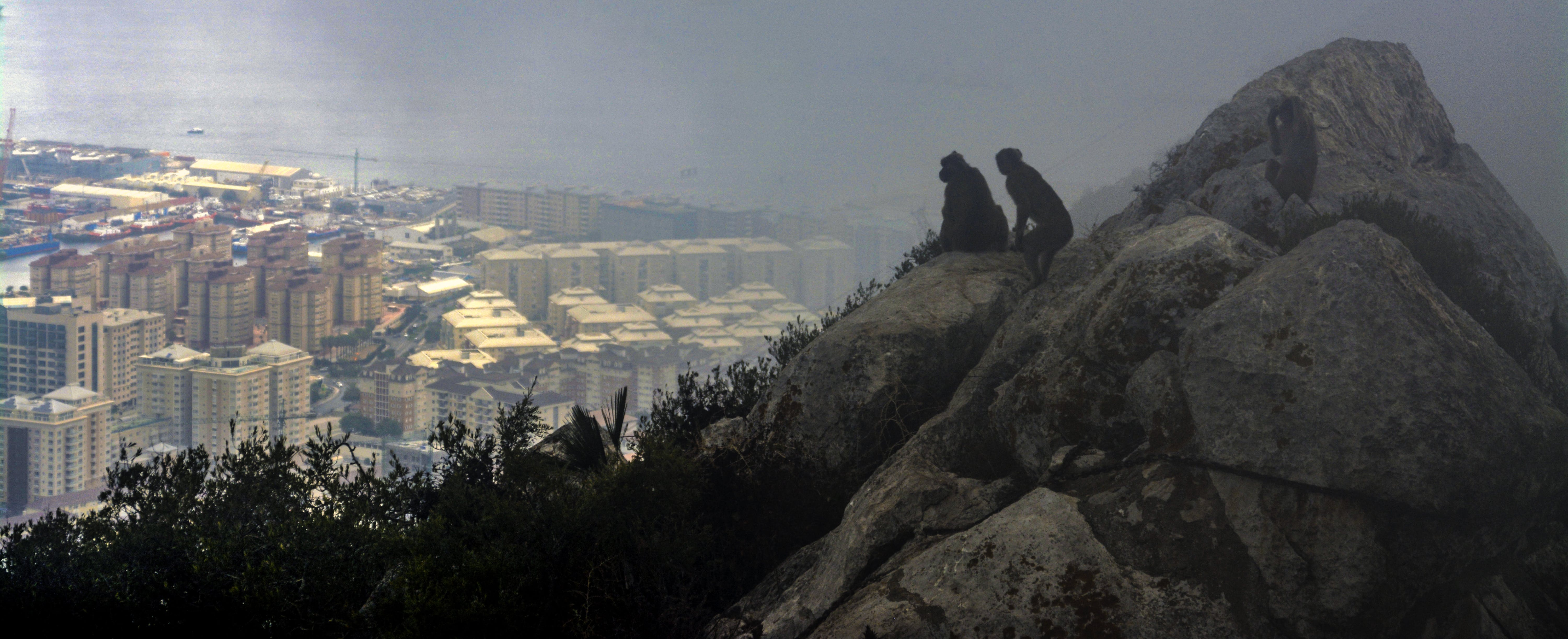 Free stock photo of city, cliff, foggy, Gibraltar