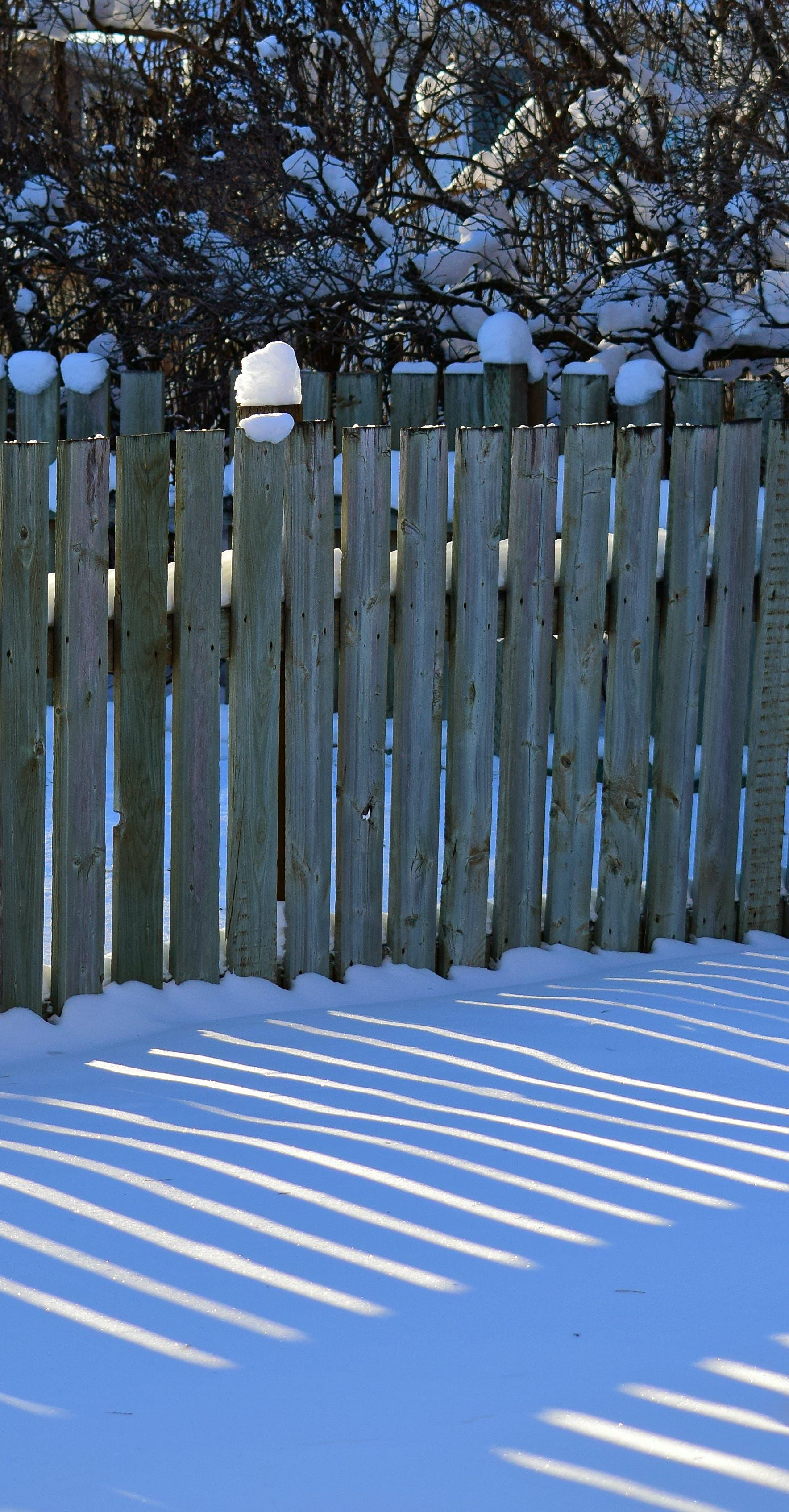 Free stock photo of fence, snow, sun, winter