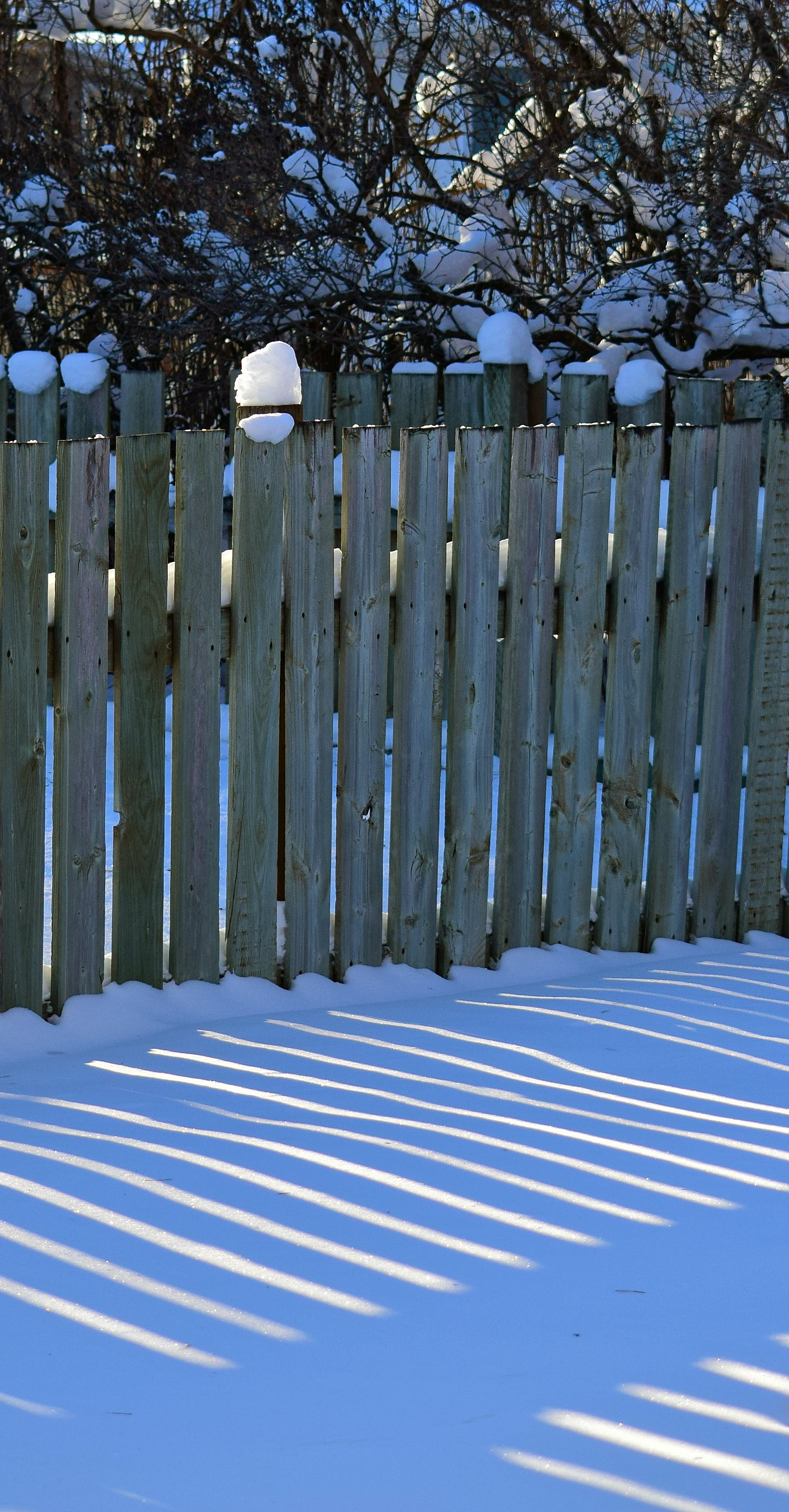 fence, snow, sun