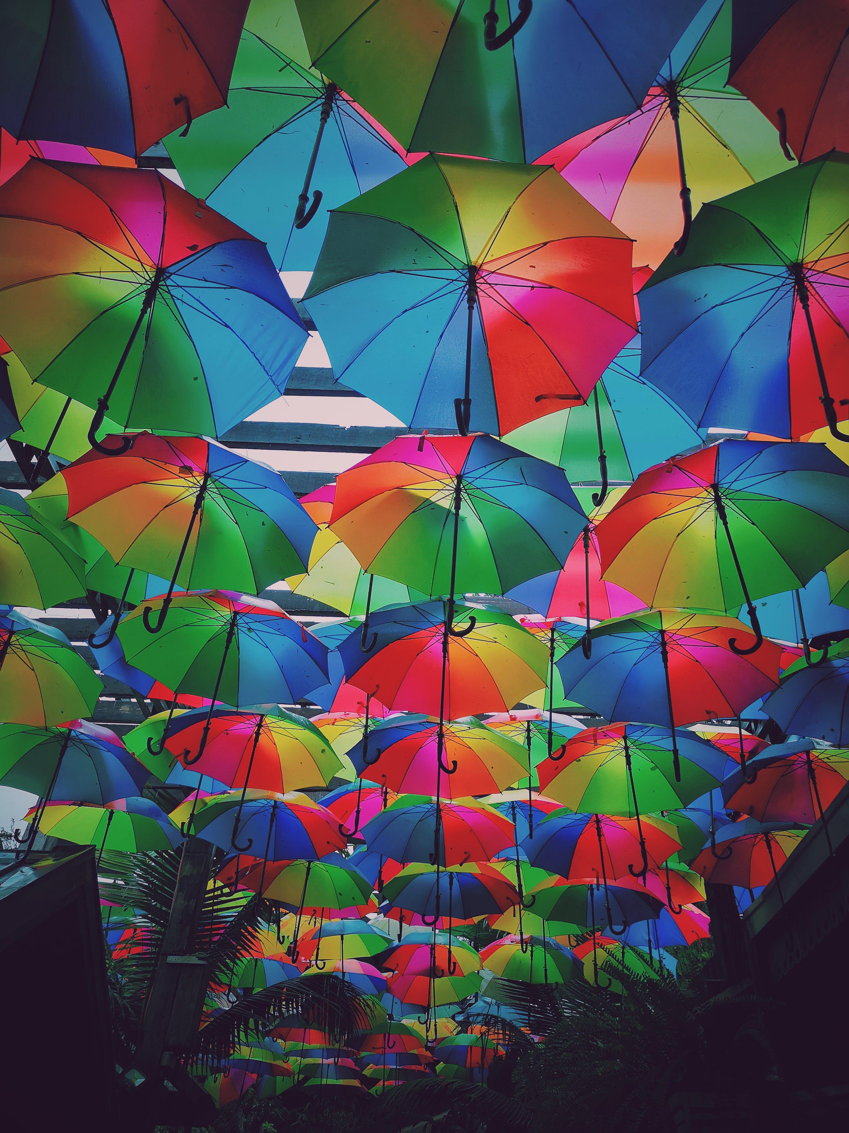 Free stock photo of rain drops, umbrellas