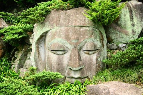 Kostenloses Stock Foto zu asiatisch, asien, buddha, buddhismus