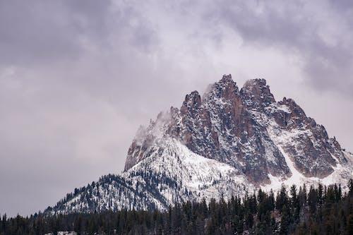 Δωρεάν στοκ φωτογραφιών με βουνό, βραχώδες βουνό, γραφικός, δασικός
