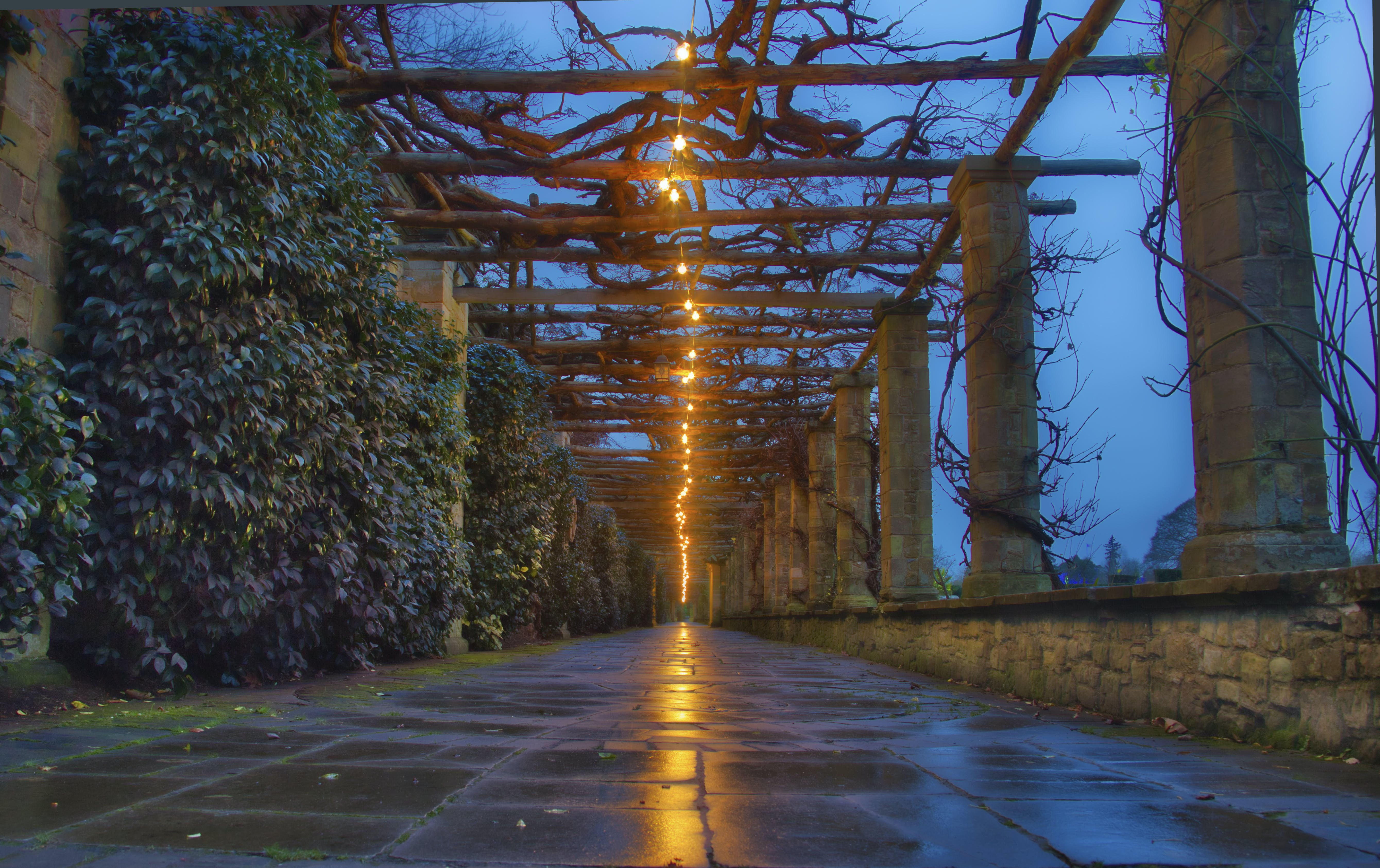 Free stock photo of christmas lights, columns, hever castle, light reflections