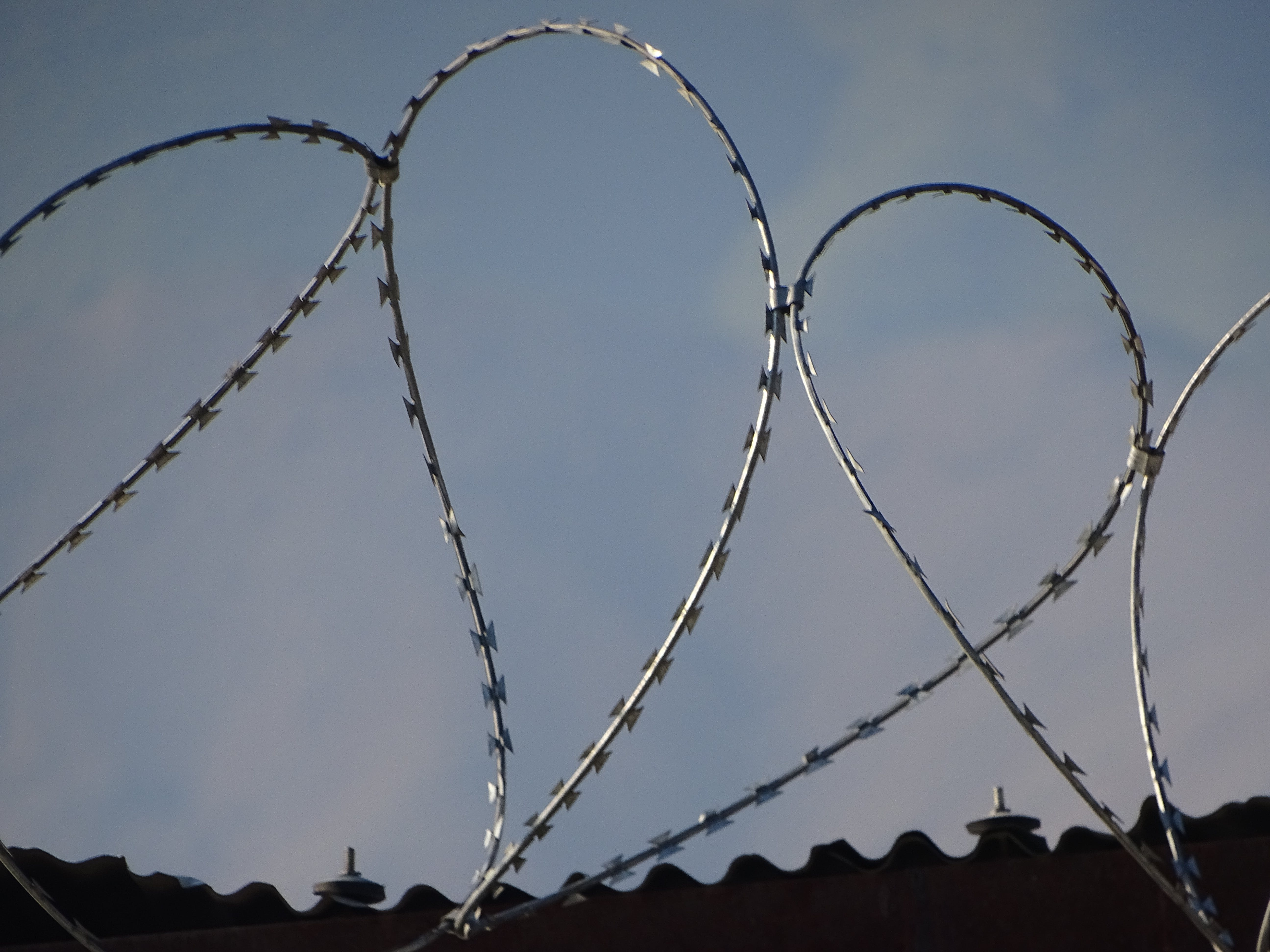 Free stock photo of barbed wire, hate, sky