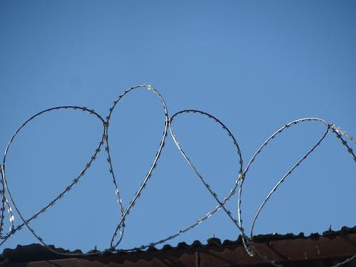 Fotos de stock gratuitas de alambre de espino, br