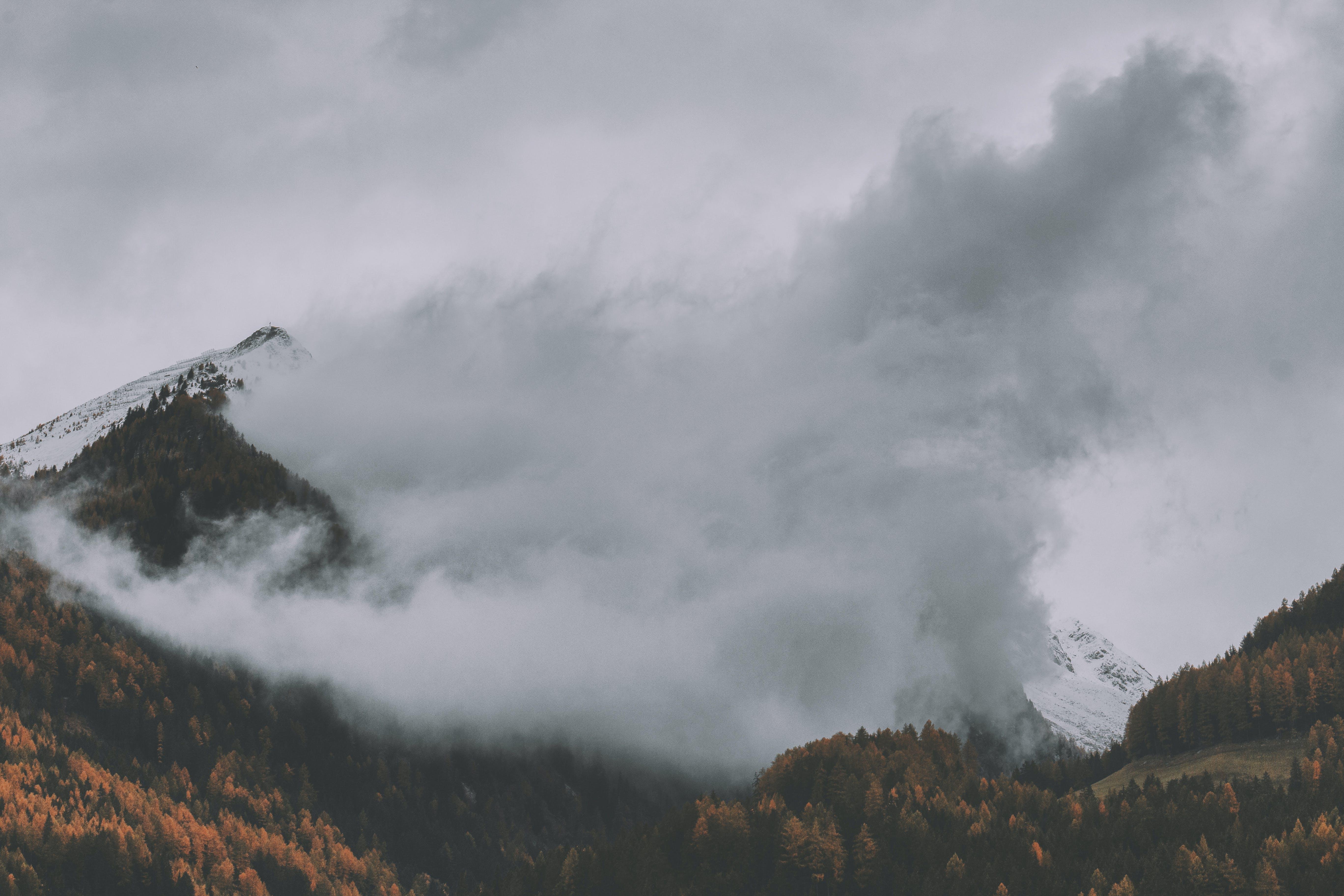 Kostenloses Stock Foto zu bäume, berg, bewölkt, draußen