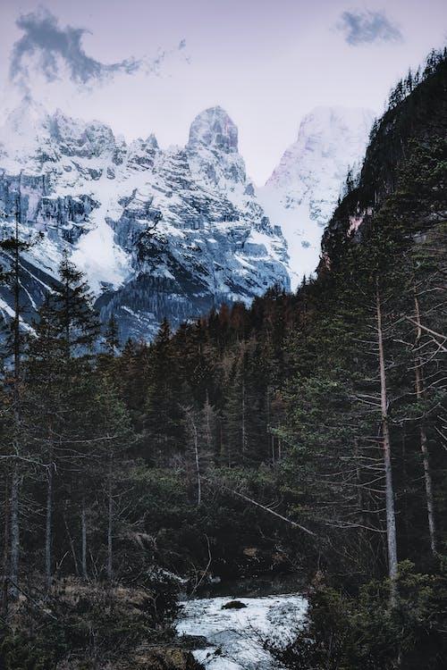 4Kの壁紙, HDの壁紙, のどか, 冬の無料の写真素材