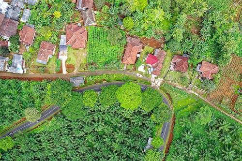Ilmainen kuvapankkikuva tunnisteilla droonimateriaali, ilmakuvaus, kasvu, katu