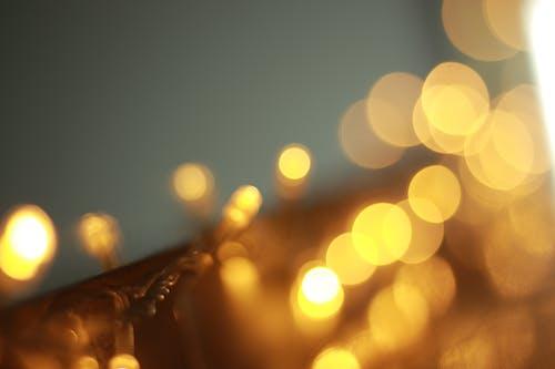 Imagine de stoc gratuită din blur, estompare, fundal încețoșat