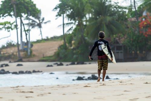 Безкоштовне стокове фото на тему «берег, берег моря, відпочинок, дошка для серфінгу»