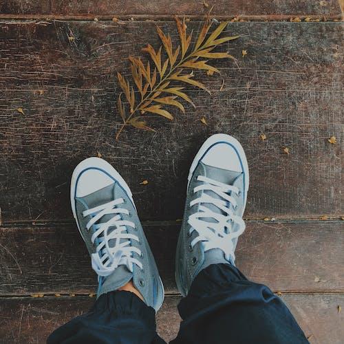 คลังภาพถ่ายฟรี ของ คอนเวิร์ส, รองเท้า, รองเท้าผ้าใบ