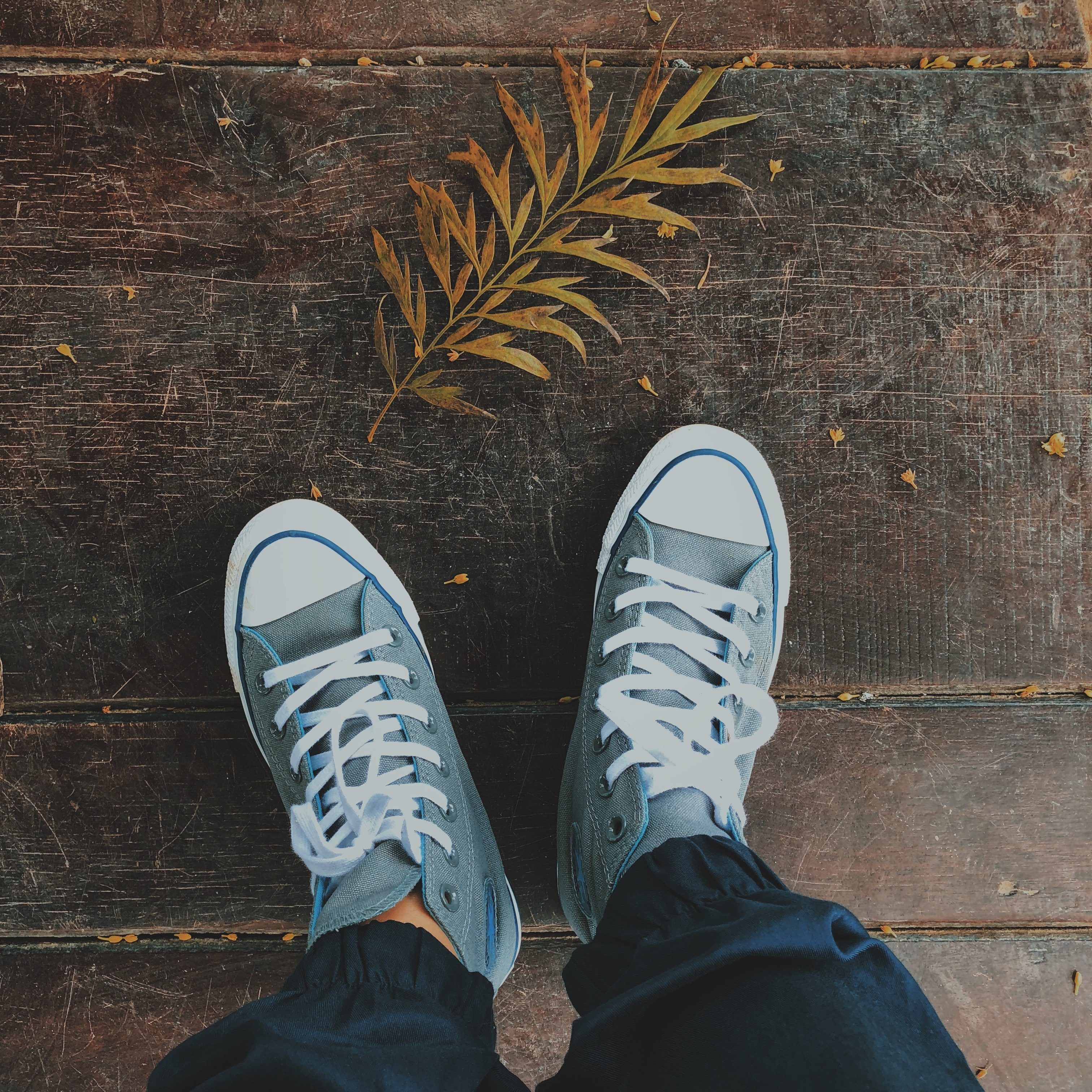 Photography of High Cut Converse · Free Stock Photo