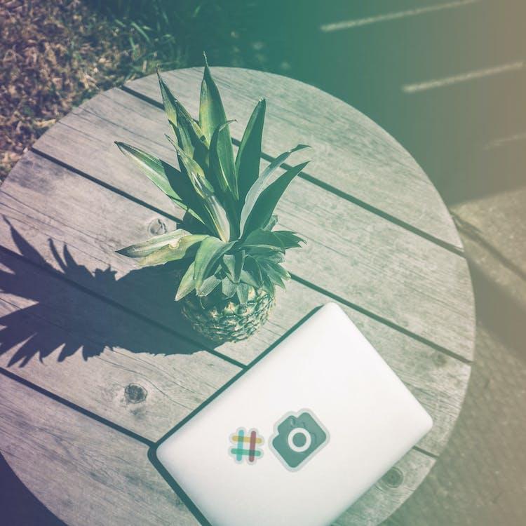 ananas, blødt træ, bærbar computer