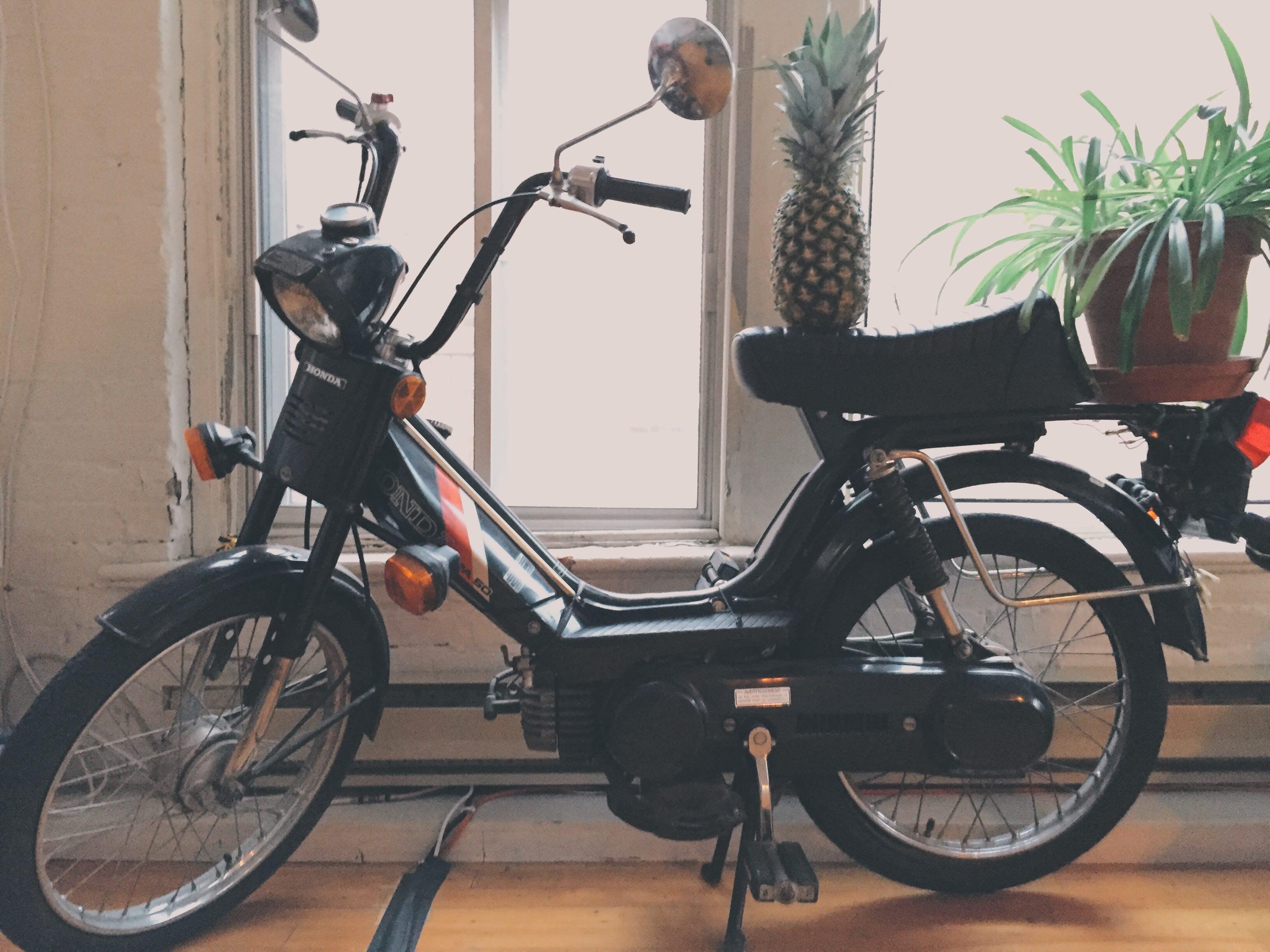 Pineapple Fruit on Motorized Bike