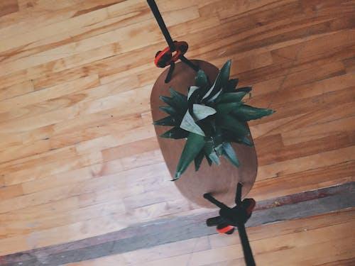 Foto stok gratis ayunan, buah, lantai kayu, nanas