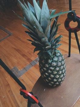 Free stock photo of pineapple, fruit, swing, hardwood floor