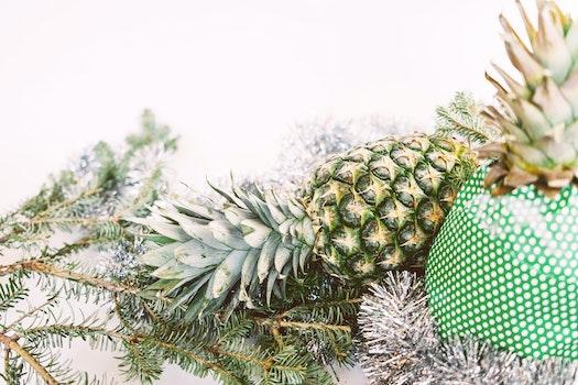 Free stock photo of festive, pineapple, christmas, fruit