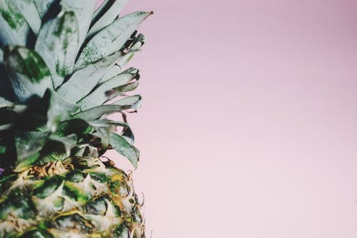 Photos gratuites de aliments, ananas, art, brouiller