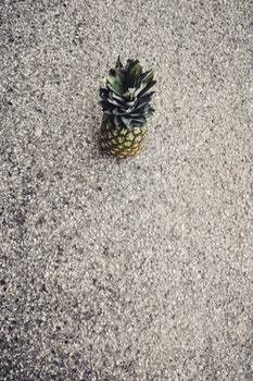 Free stock photo of pineapple, fruit, asphalt