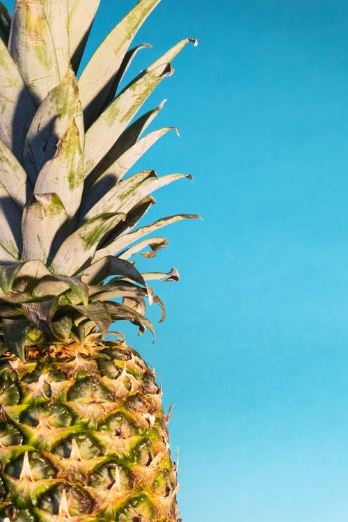 Close-up Photo of Pineapple Fruit Against Blue Sky