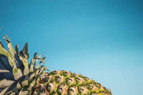 Focus Photography of Pineapple Fruit