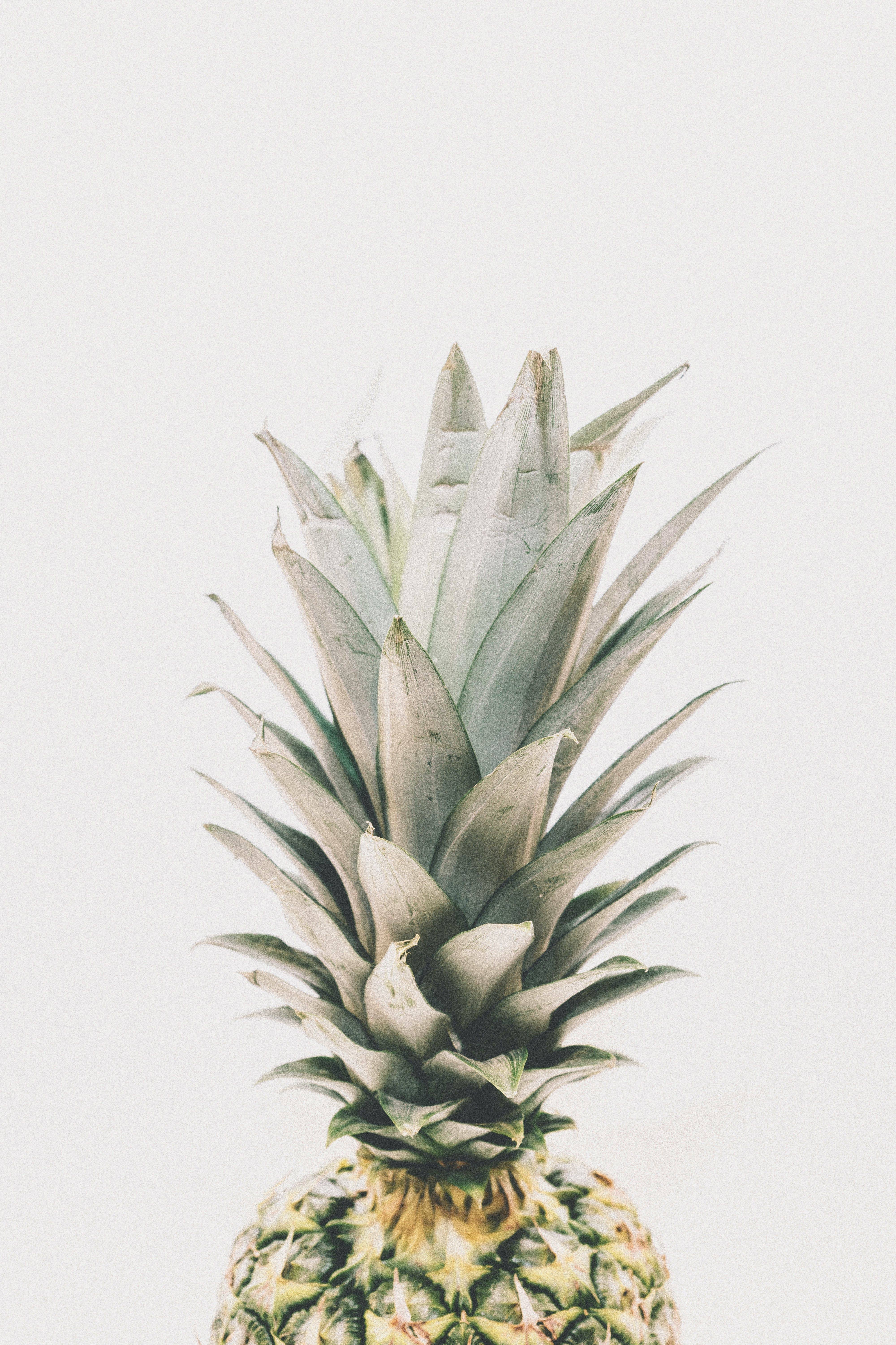 Photography Of Pineapple