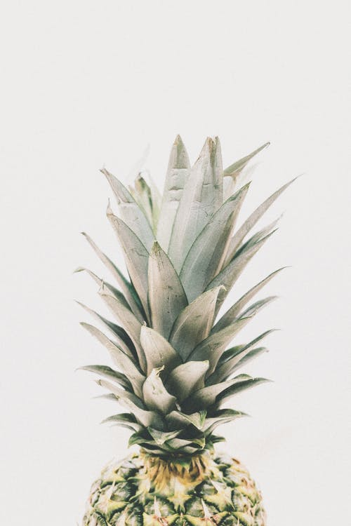 aliments, ananas, fruit