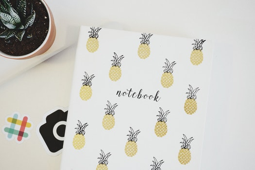 White Pineapple Print Printer Paper