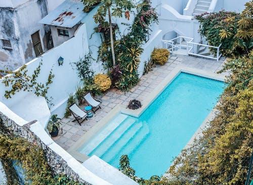 Imagine de stoc gratuită din grădină, piscină, piscină excavată, vilă