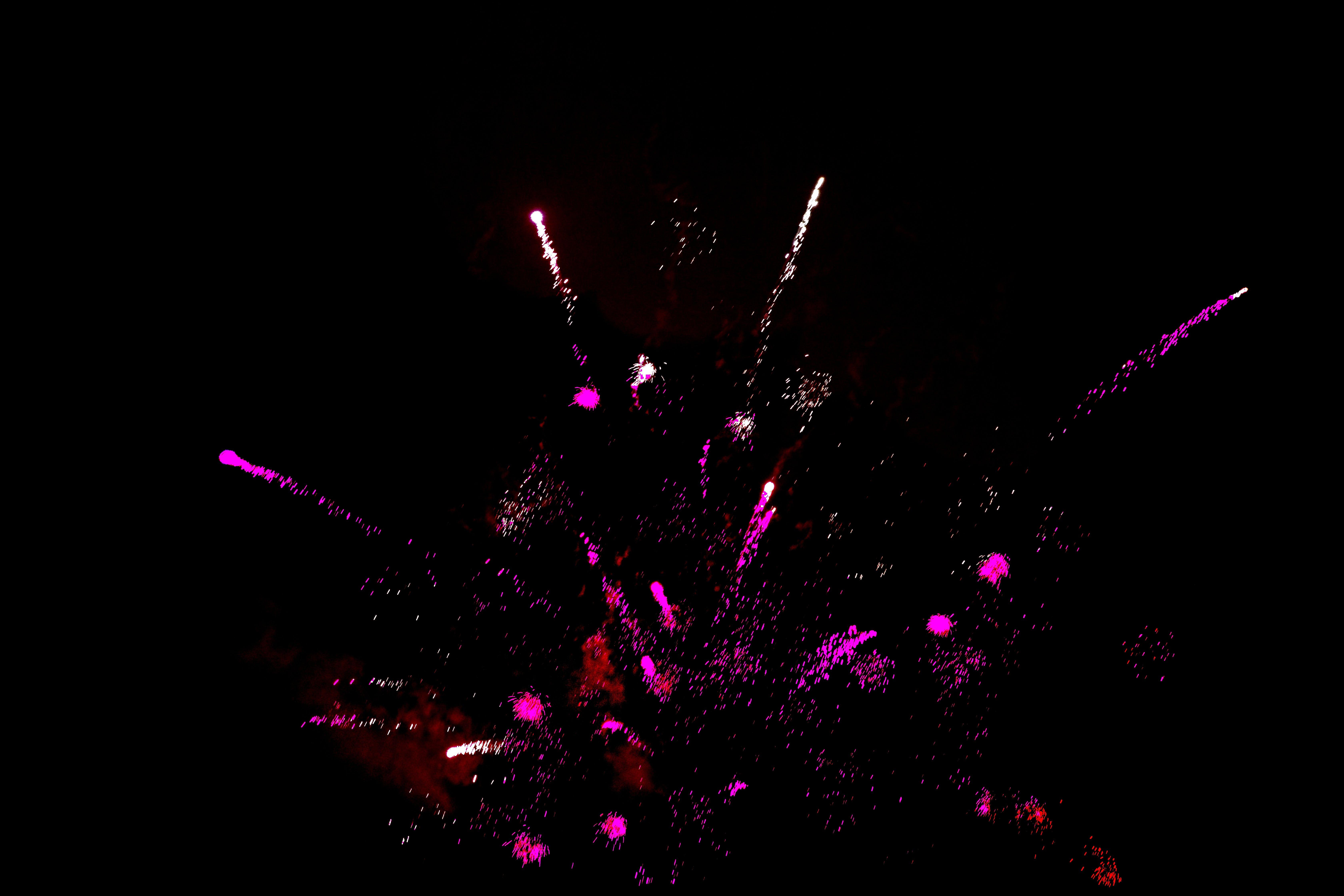 Free stock photo of firework