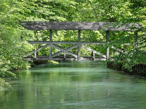 Ảnh lưu trữ miễn phí về cầu, cây cầu gỗ, dòng nước, gỗ