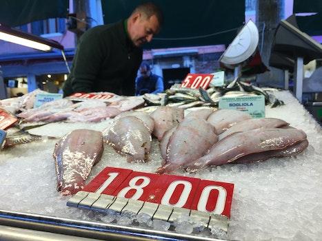 Free stock photo of fish, fish market, seafood, price