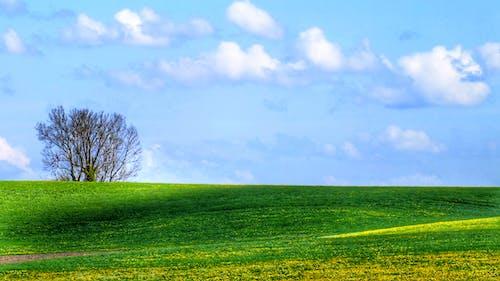 Imagine de stoc gratuită din imagine de fundal pentru calculator, minimalist, peisaj