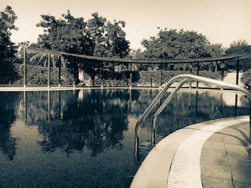 Fotobanka sbezplatnými fotkami na tému architektúra, bazén, čiary a krivky, dizajn