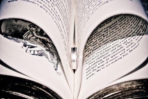 Základová fotografie zdarma na téma čtení, prsten