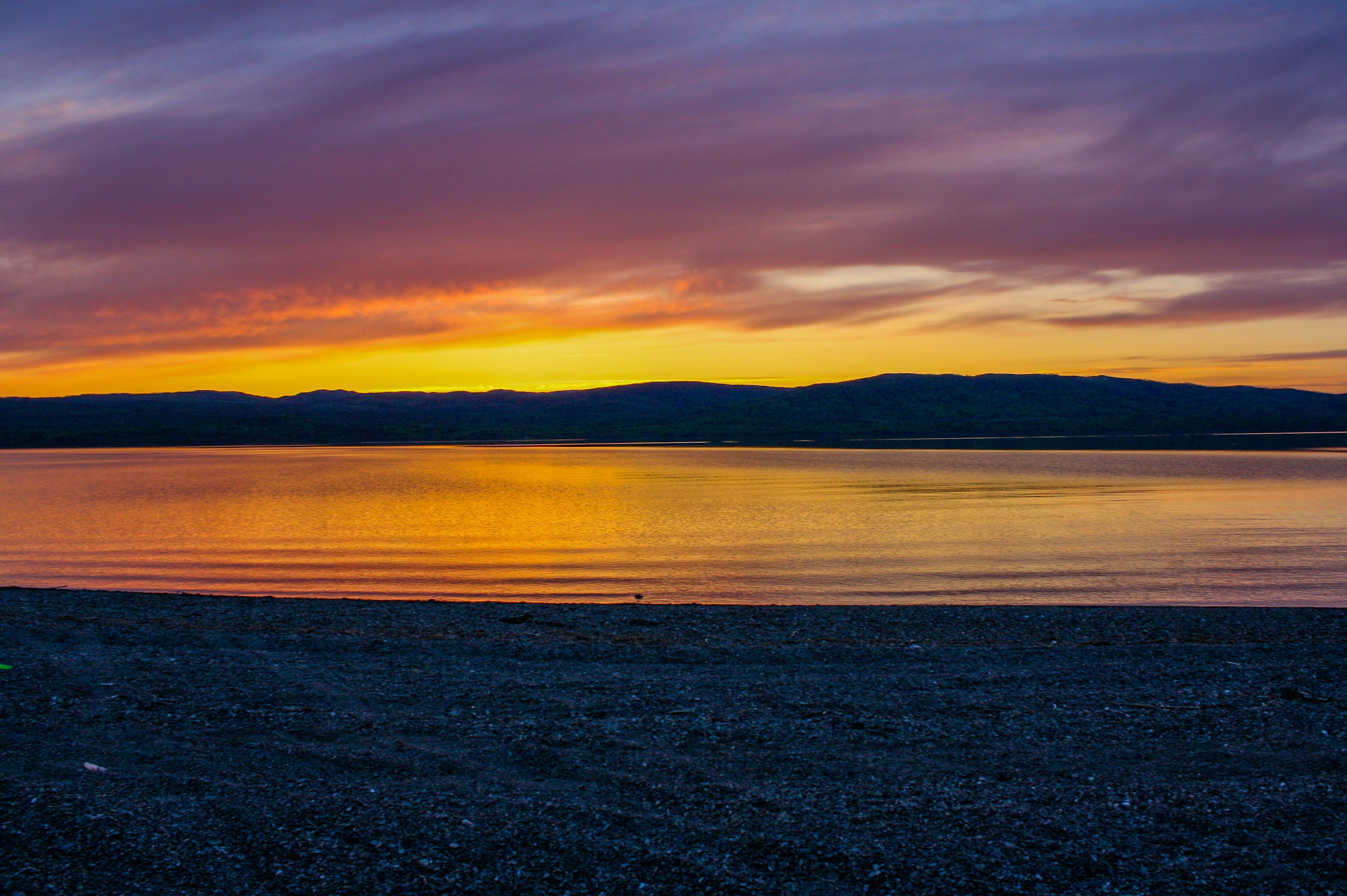 Free stock photo of golden, purple, sky, sunset