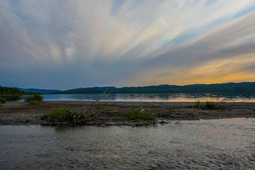 Základová fotografie zdarma na téma fialová, obloha, západ slunce, zlatý