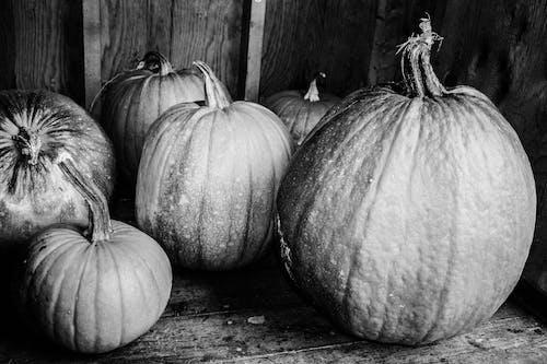 Základová fotografie zdarma na téma černobílá, dýně, halloween, jednobarevný