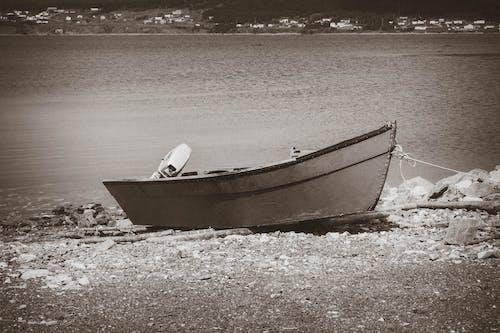 Základová fotografie zdarma na téma člun, dory, malý, rybaření